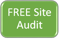 FREE Microsoft Dynamics CRM Site Audit