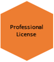 Microsoft CRM Online 2013 professional license