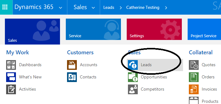 Working with Leads in Dynamics 365